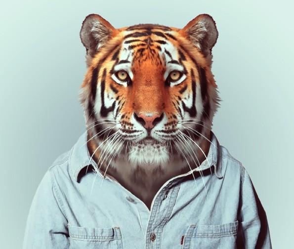 推出了一个名为zoo book的摄影集,以动物为主体,映射人类迷恋时尚